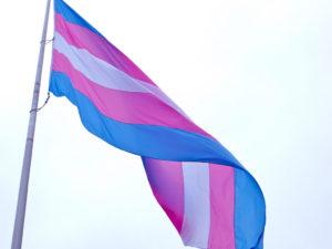 """Transgender Flag: San Francisco (2012)"" by torbakhopper is licensed under CC BY 2.0 (https://www.flickr.com/photos/gazeronly/8206733386)"